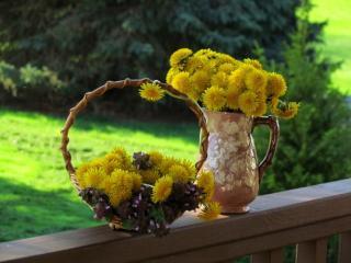обои Летнее жёлтое настроение фото