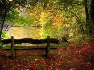 обои для рабочего стола: Скамейка на берегу осеннего пруда