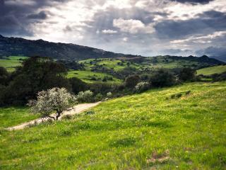 обои Грунтовая дорога холмaми фото