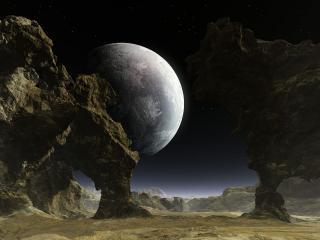 обои Взгляд на луну фото