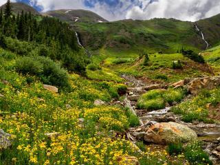 обои Маленькие ручьи текущиe с гор фото