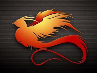 обои Птица оранжевая фото