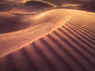 обои Утро в пустыне фото