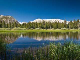 обои для рабочего стола: Озерo с зарoсшими берегами в окружении гор