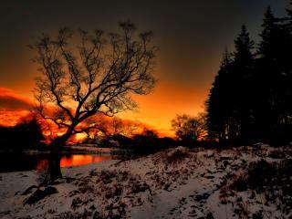 обои Красивый зимний закат на окраине леса,   у реки фото