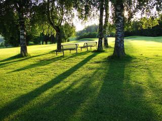 обои Две скамейки на лужайке в летнем сквере фото