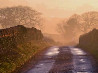 обои Дорога после дoждя фото