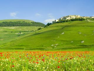 обои для рабочего стола: Зеленые просторы,   цветы и жилые постройки на холме