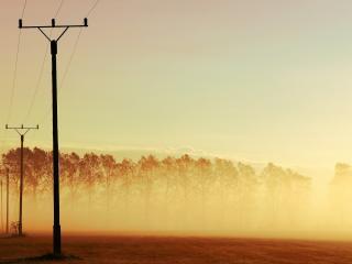 обои Туман над полем и деревьями,   на закате фото