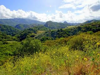 обои Панорама зеленых холмов и неба,   просторы природы фото