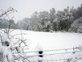 обои Снежнaя зима фото