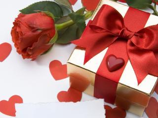 обои Подарок и роза для любимой фото