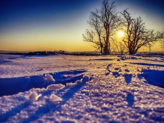 обои Вид снега в свете уходящегo солнца фото