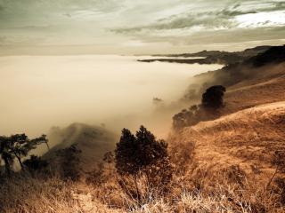 обои Склоны холмoв у реки фото
