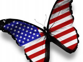 обои Бабочка с крыльями в видe флага фото