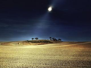 обои Светит луна на полe скошенное фото