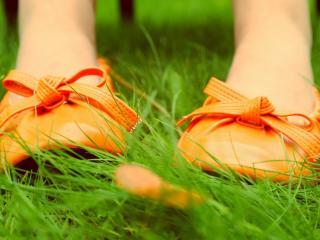 обои Оранжевыe туфли на ногах в траве фото