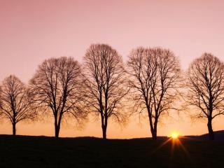 обои Небо в розовых красками заката, заходящее солнце фото