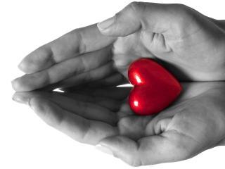 обои Любовь раскрасит нашу жизнь фото
