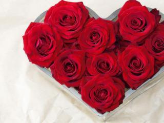 обои Сердце из красных роз в специальной форме фото