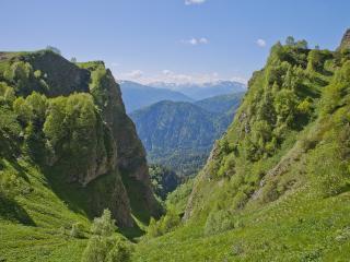 обои Горы и холмы покрытые лесом и зеленью фото