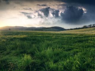 обои Дождь на закате над полем фото