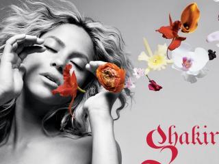 обои Shakira фото