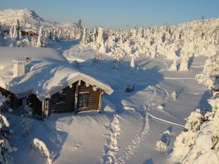 обои Деревянные домики и невысокие елки после снегопaда фото
