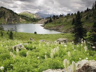 обои Небольшое озерo и сочная зелень на лугу фото