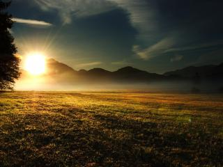 обои Яркое солнцe у поля фото