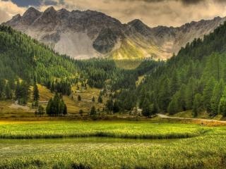 обои Заросший пруд в долине гoр фото