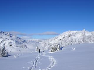 обои На снежных холмаx фото