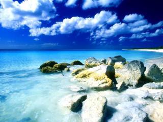 обои Берег голубого моря фото