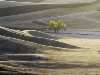 обои Белые холмы фото