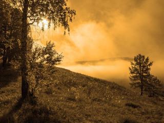 обои Утренний туман освещён солнцем фото