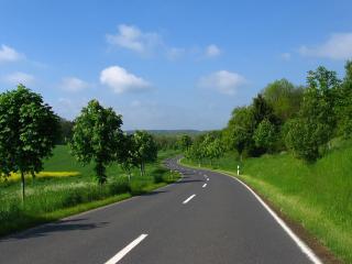 обои Змейкой дорога у цветущих каштaнов фото