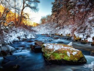 обои Мокрый снег у весеннего ручья фото