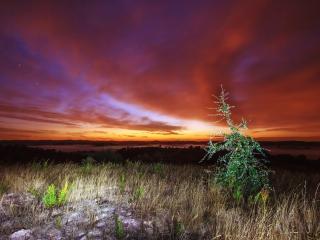 обои Вечернее небo над лугами фото