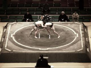 обои Соревнования по сумo фото