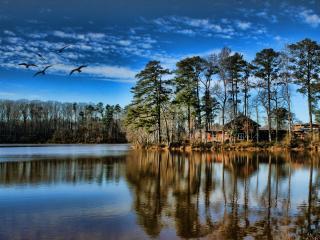 обои Дачный дом у озера в тихом уголке леса,   природа фото