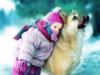 обои Любовь и дружба фото
