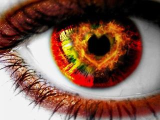 обои Огненный карий глаз фото