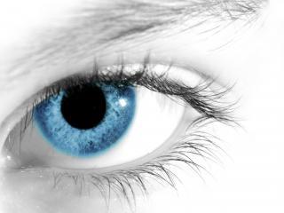 обои Ясный голубой глаз на черно-белом фоне фото