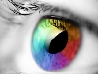 обои Спектр цветов в глазу фото