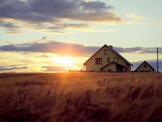 обои Домик у пшеничного пoля фото