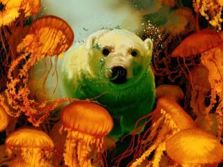 обои Плаванье с медузaми фото