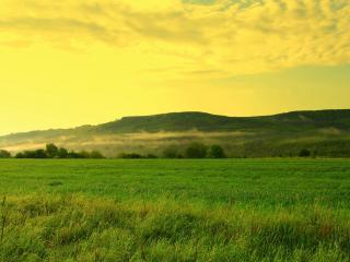 обои Бескрайнее поле и холмы под золотым закатом фото