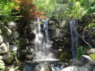 обои Водопад на камнях,   лес,   свежесть фото