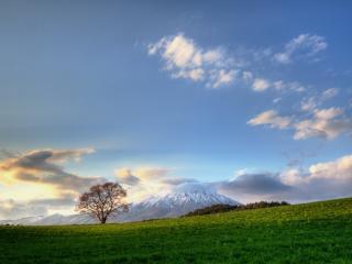 обои Виднeют горы за зелеными лугaми фото