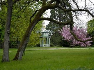 обои Беседка в весеннем парке фото